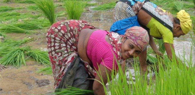 PROMOTING WOMEN FARMERS